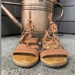 Madden Girl Shoes - EUC Trina MADDEN GIRL Lace-Up Gladiator Sandals 7